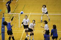masters2014_volleyball_4masters2014_volleyball_4